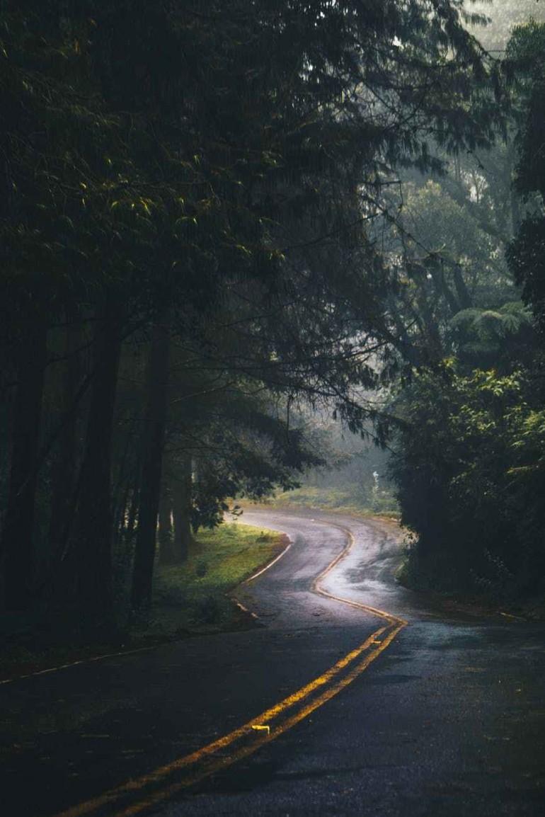 1-770x1154 Cum sa conduci in ploaie