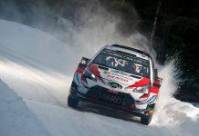 WRC 2019- Tanak Suedia