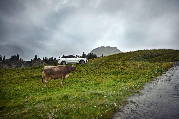 P90374471_lowRes_the-new-bmw-x3-xdriv BMW X3 xDrive30e, inca un SAV PHEV