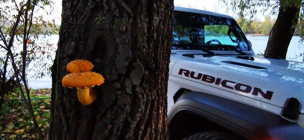 Wrangler-Rubicon-9-1068x494 Wrangler Rubicon, aventura in off road